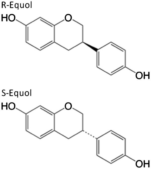 A-Effects-of-100nM-17b-estradiol-R-equol-and-S-equol-on-ROS-accumulation-in.jpg