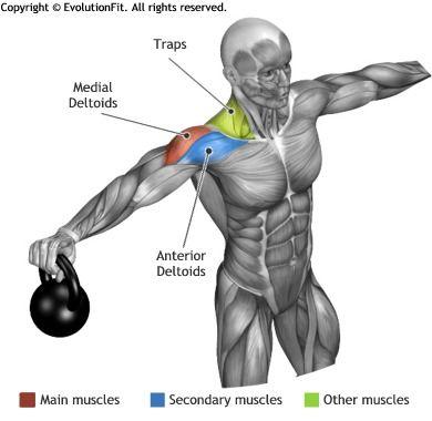 a9526de30e17ad5dc758d14a04defab9---workout-life-fitness.jpg