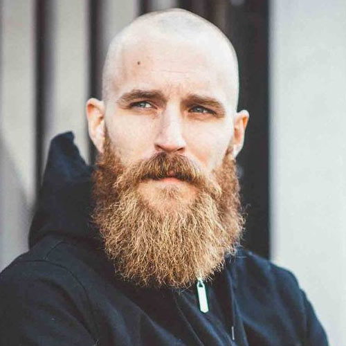 Shaved-Head-with-Full-Beard-Hipster.jpg
