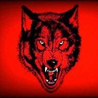 nWo Wolfpac